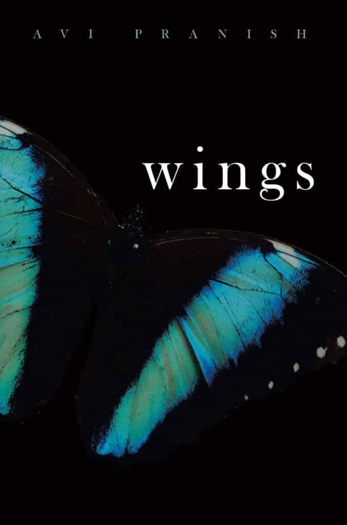 Avi-Pranish-Wings